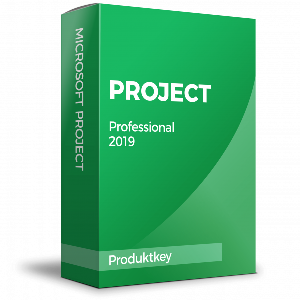 Microsoft Project 2019 Professional